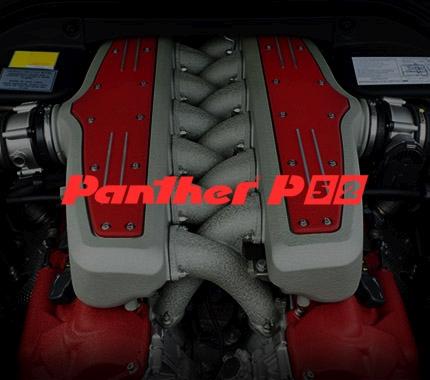 Panther P52